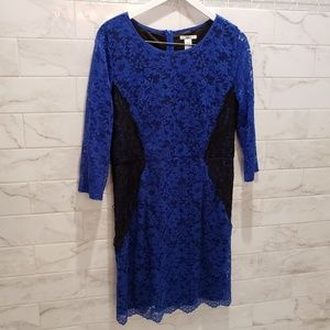 Lace blue & black fitted dress
